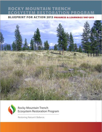 Cover of ER Trench Blueprint for Action 2013