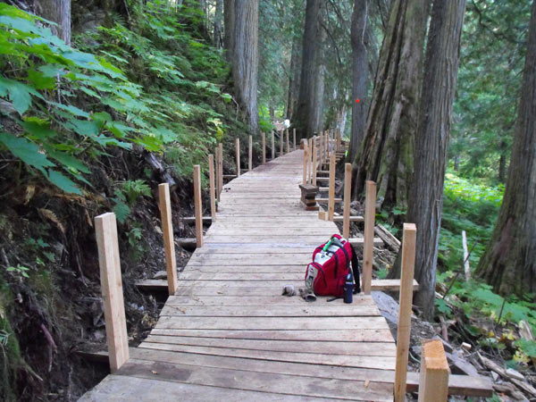 Once complete, the Ancient Forest Trail boardwalk will be similar to the Universal Boardwalk (shown above) constructed with PCAF funding in 2011.