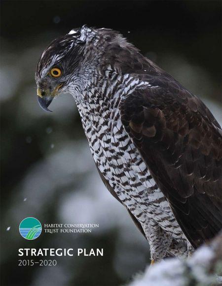 a1sx2_Original1_HCTF-Strategic-Plan-Cover_1000px.jpg