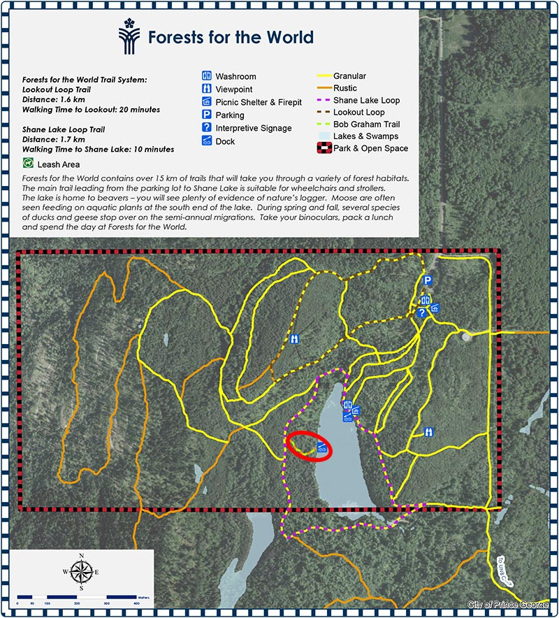 Forest_for_the_WorldMap2015_small.jpg