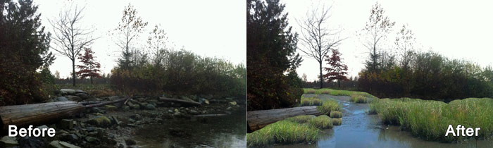 Before-and-after-of-Renfrew-Creek_landscape_layout.jpg