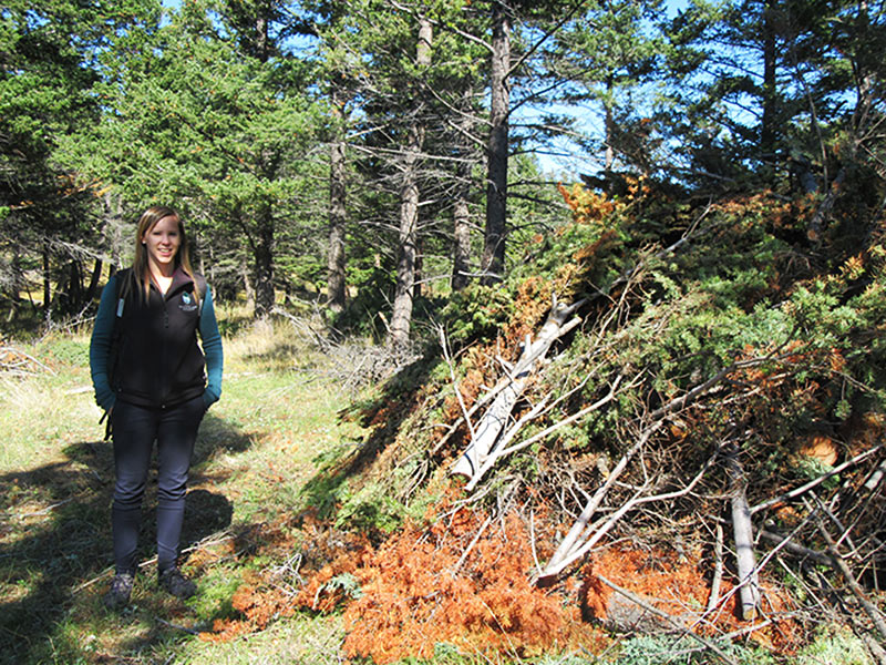 Katelynn stands next to a pile of slashed trees that will be burned in winter.