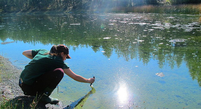 Guest blog post author Kayla Akins takes a water sample from Kathleen Lake.