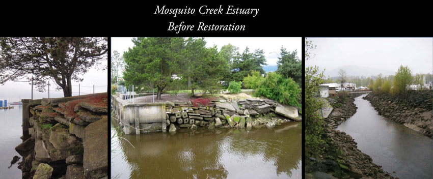 Mosquito_Creek_before_restoration_collage.jpg