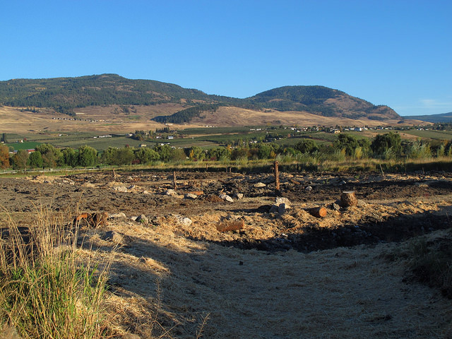 The completed wetland site at Curly Frog Farm.